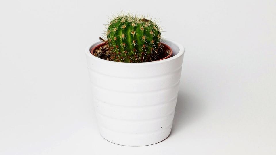 Small Office Decoration Ideas