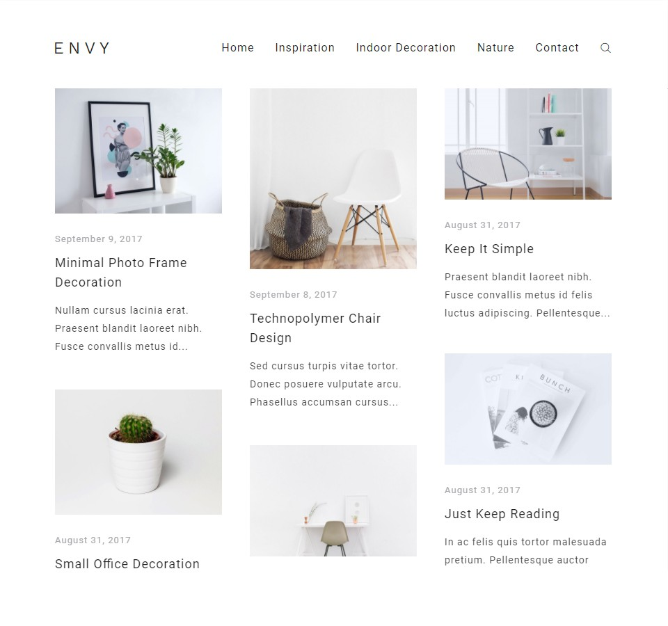 Envy Blog - Precise Themes