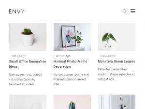 Envy Blog Pro - Screenshot