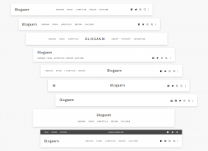 Blogasm Pro - Header Layout Variation