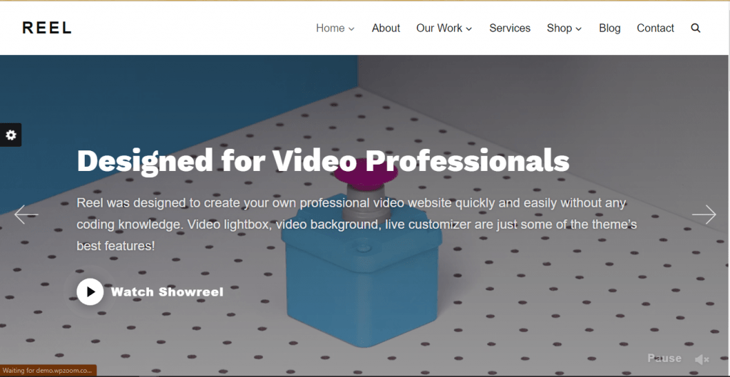 Reel - Videographer WordPress Themes