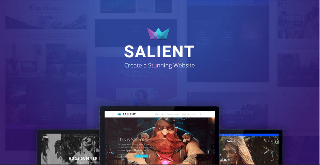 Salient - WordPress Themes for Videographers